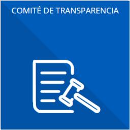 Las actas y resoluciones del Comité de Transparencia de los sujetos obligados