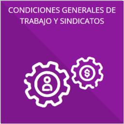 Las condiciones generales de trabajo, contratos o convenios que regulen las relaciones laborales del personal de base o de confianza, así como los recursos públicos económicos, en especie o donativos, que sean entregados a los sindicatos y ejerzan como recursos públicos