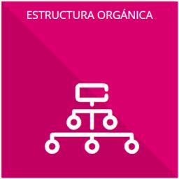Su estructura orgánica completa, en un formato que permita vincular cada parte de la estructura, las atribuciones y reponsabilidades que le corresponden a cada servidor público, prestador de servicios porfesionales o miembro de los sujetos obligados, de conformidad con las disposiciones aplicables