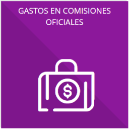 Los gastos de representación y viáticos, así como el objeto e informe de comisión correspondiente