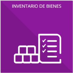 El inventario de bienes muebles e inmuebles en posesión y propiedad