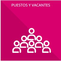 El número total de las plazas y del personal de base y confianza, especificando el total de las vacantes, por nivel de puesto, para cada unidad administrativa