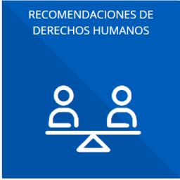 Las recomendaciones emitidas por los órganos públicos del Estado mexicano u organismos internacionales garantes de los derechos humanos, así como las acciones que han llevado a cabo para su atención