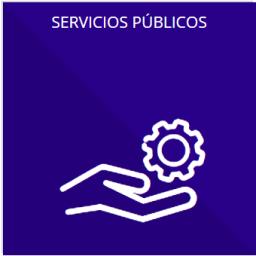 Los servicios que ofrecen señalando los requisitos para acceder a ellos